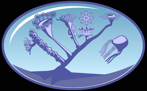 The Cindarian Tree of Life Project